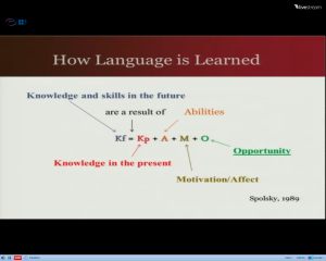 Screenshot of Joy Egbert's slides